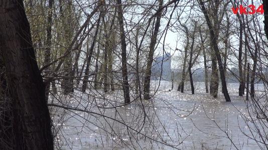 На сегодняшний день в ерики и озера Волгоградской поймы поступило 4,34 миллиона кубометров воды