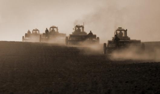 4,2 миллиарда рублей составило государственное финансирование сельского хозяйства волгоградского региона в этом году