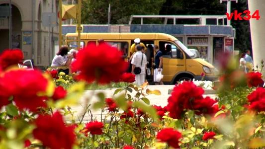 В Волгограде возобновляется работа общественного транспорта в полном объеме