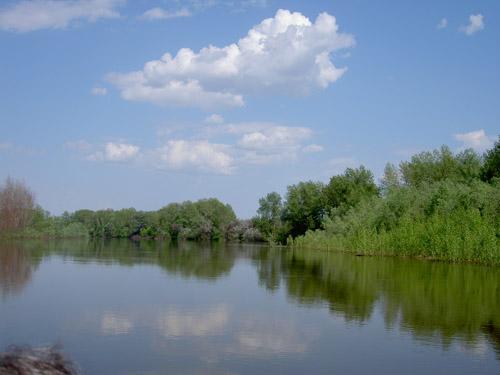 Прокуратурой Волгоградской области организована проверка доводов публикаций средств массовой информации о застройке береговой зоны реки Ахтуба