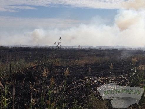 В Волжском крупный пожар охватил 3 гектара земли