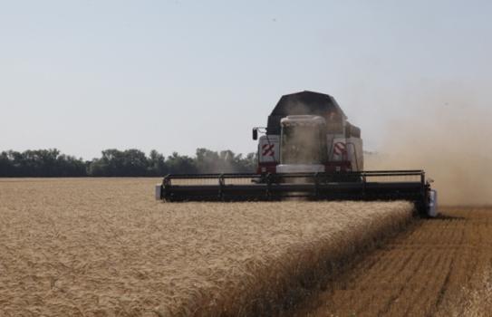 В Волгоградской области собран второй миллион тонн зерновых