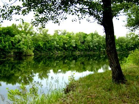 В Волго-Ахтубинскую пойму закачано более 10 миллионов кубометров воды