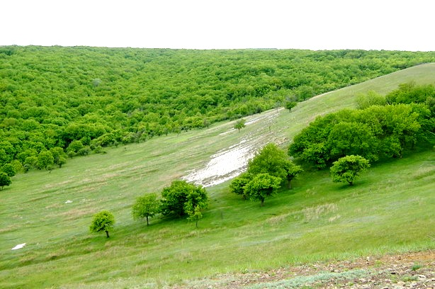 В Волгоградской области 10 га земли природного парка «Нижнехоперский» возвращены государству