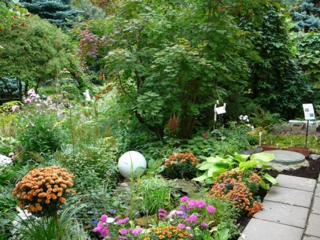 В городе-спутнике Волгограда создадут детский ботанический сад