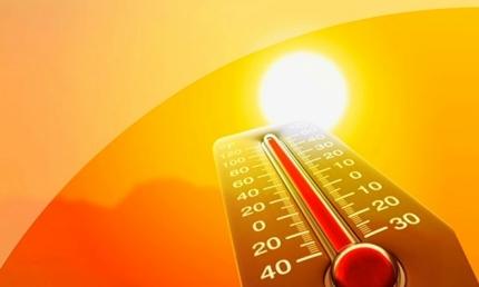 По сообщению Волгоградского ЦГМС днём 4, 5 и 6 августа в отдельных районах Волгоградской области ожидается сильная жара +40...+41ºС