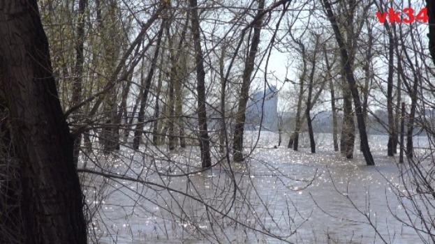В этом году стартовало раннее половодье в Волгоградской области