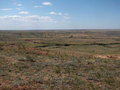 В Волгоградской области глава поселения выделил 34 земельных участка своим родственникам - общая стоимость земли составила более 20 миллионов рублей
